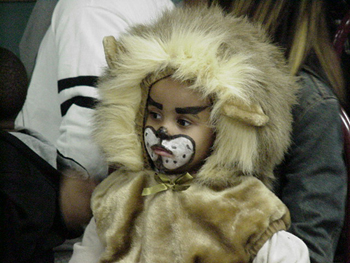 Photo of a child in a lion costume.